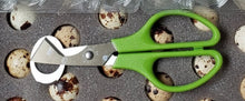 Coturnix Egg Scissors x 3