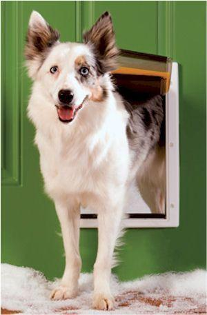 PetSafe PPA00-10985 Extreme Weather Dog Door (Medium) - DogDoorMart