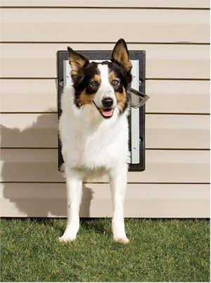 PetSafe PPA11-10916 Wall Entry Aluminum Pet Door (Medium) - Peazz Pet