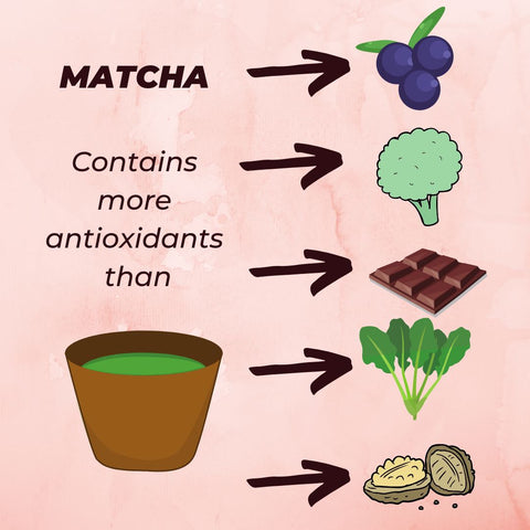Matcha antixodiants