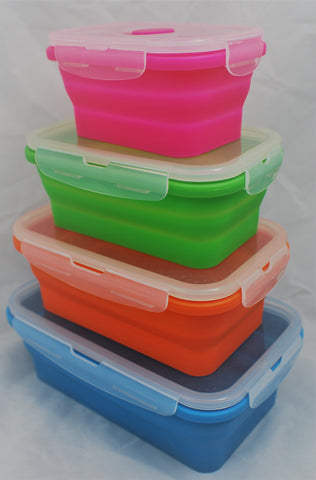 Set of 4 Rectangle Collapsible Containers