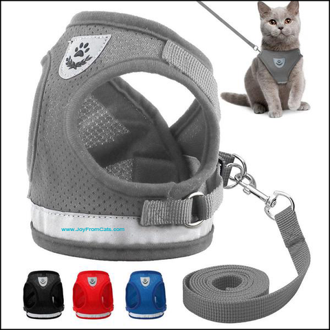 The Explorer™ - Reflective Harness & Leash Set For Cats / Kittens - www.JoyFromCats.com