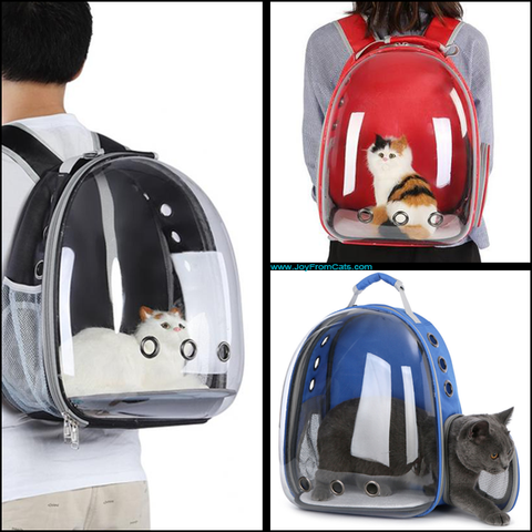 Kitty Carry™ - www.JoyFromCats.com