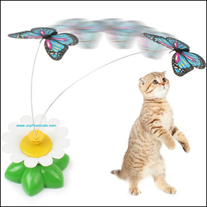 Interactive Rotating Toy - www.JoyFromCats.com