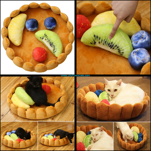 Comfy Cat Fruit Tart Bed - www.JoyFromCats.com