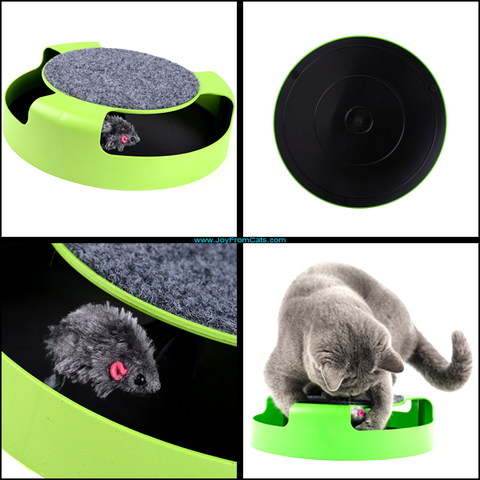 Catch The Mouse Toy - www.JoyFromCats.com