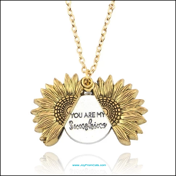 """You Are My Sunshine"" Pendant Necklaces - www.JoyFromCats.com"