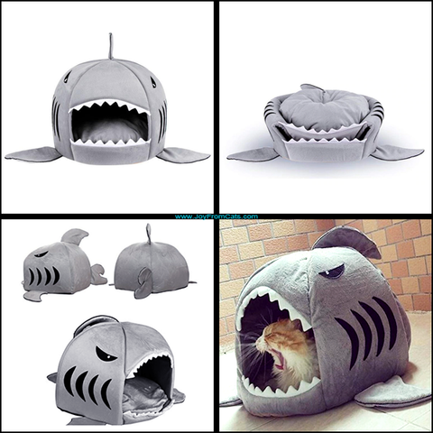 Comfy Cat Shark Bed - www.JoyFromCats.com