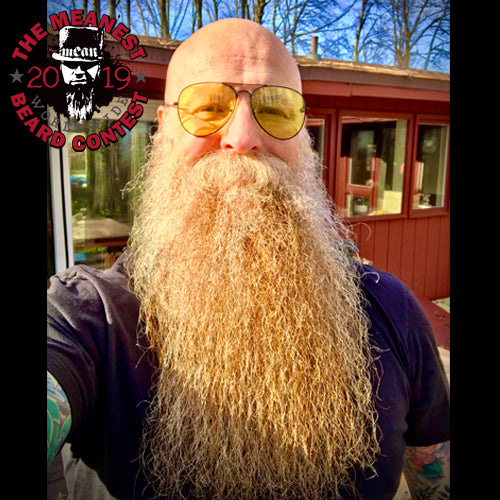 The TOP 12 MEANest BEARDS of 2019 by MEAN BEARD