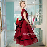 Organza Homecoming Dress, V-Back Homecoming Dress, Sleeveless Homecoming Dress, V-Neck Junior School Dress, DA896