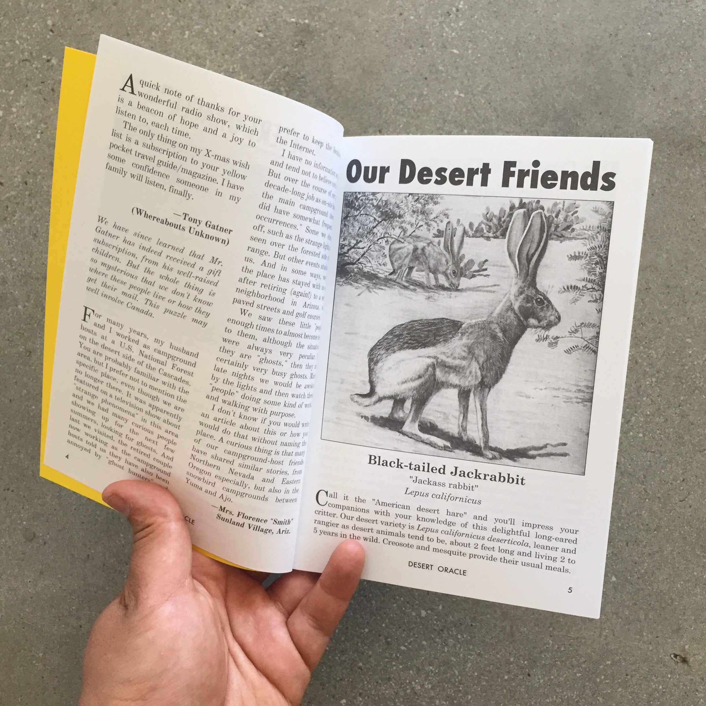 Desert Oracle - Issue #7