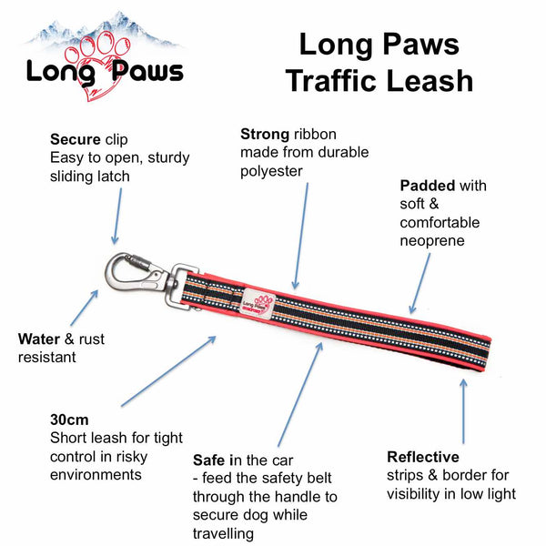 Traffic Handle: Traffic Leash & Seat Belt Attachment
