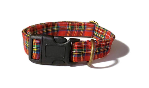 "Organic Cotton Collar in ""Scotsman"""