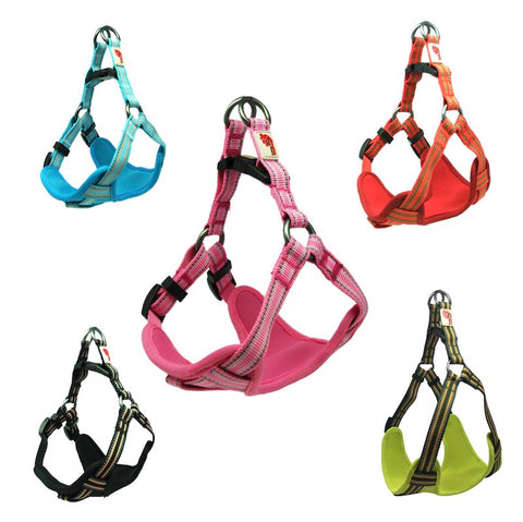 Comfort Collection Step in Harness