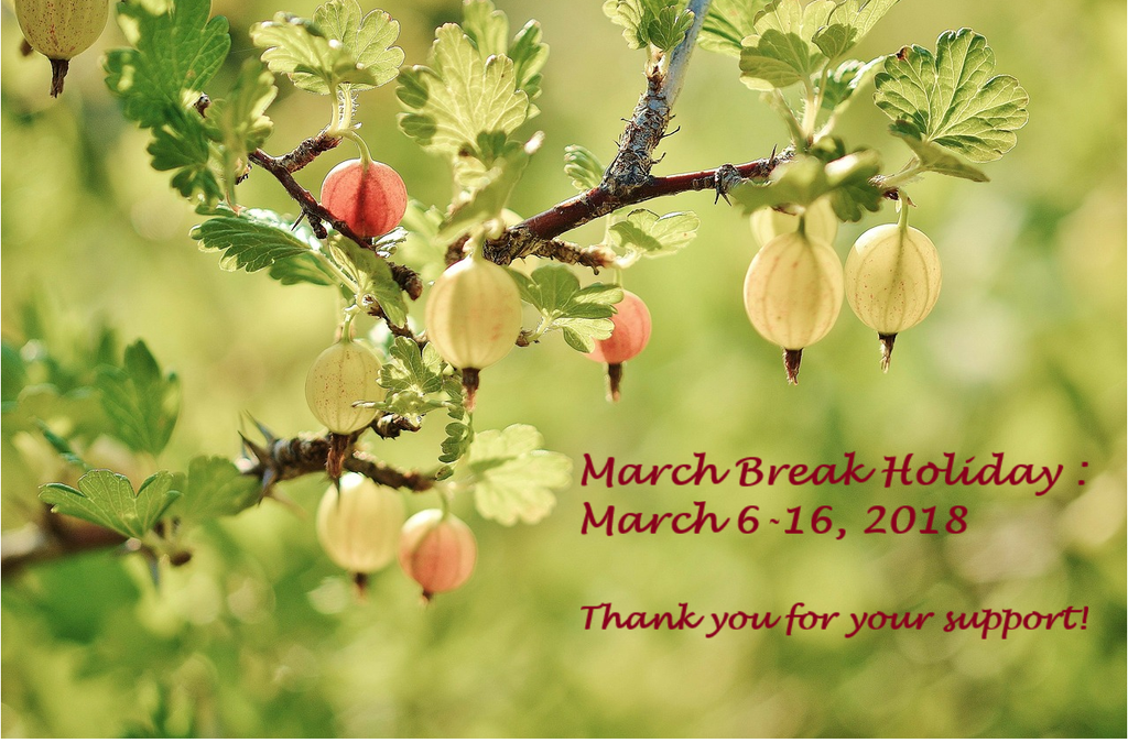 March Break Holiday