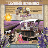 The League of Crafty Canines presents : The Lavender Experience - LEAGUE OF CRAFTY CANINES