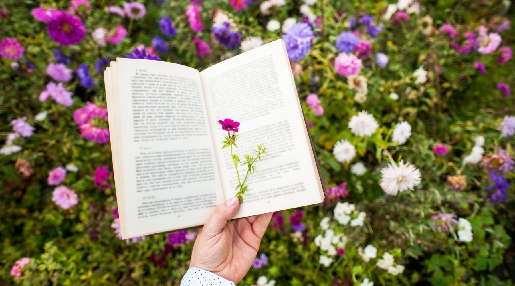 Mental Health Awareness Week: 7 Flower Books to Soothe Your Mind