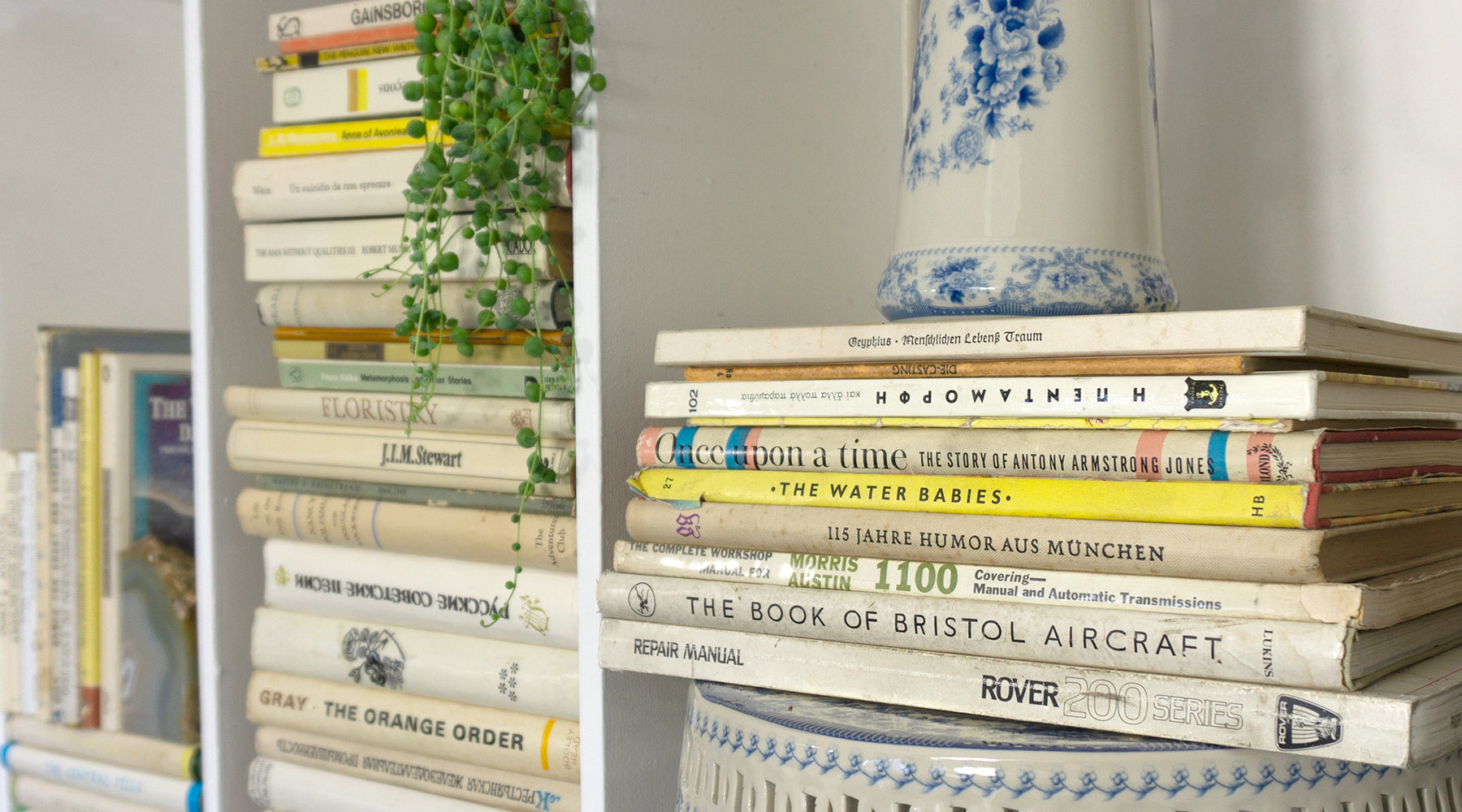 How to create a chic shelfie | Country House Library Style