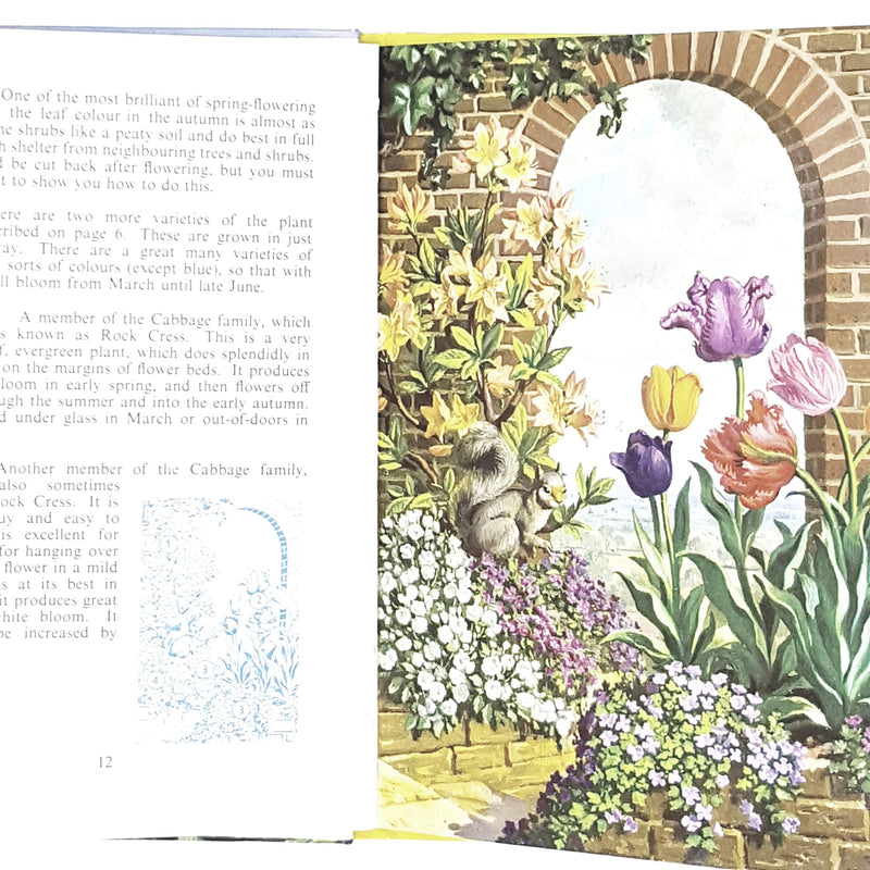 The Ladybird Book of Garden Flowers by Brian Vesey-Fitzgerald 1960