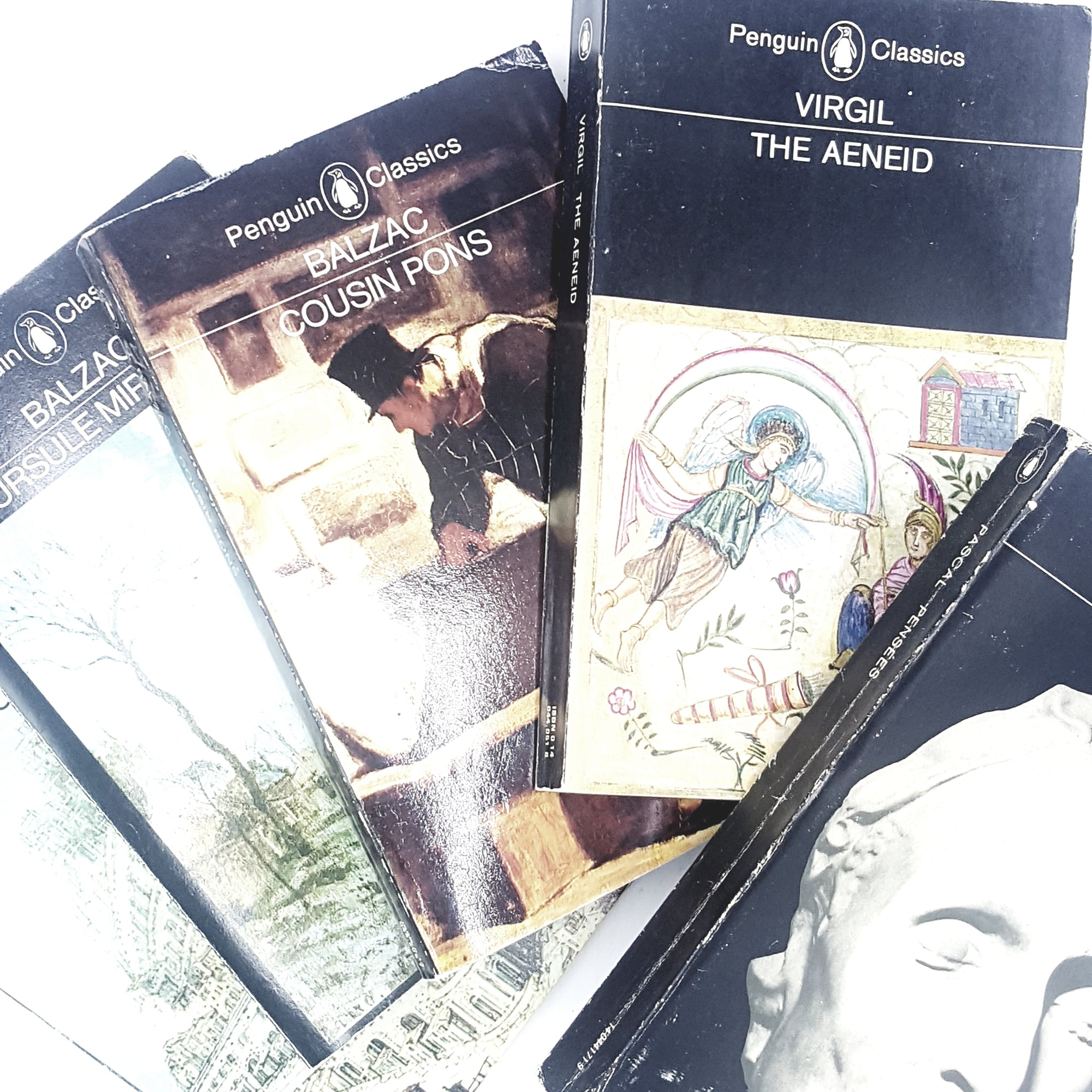 collection-intellectual-penguin-classic-books-country-house-library