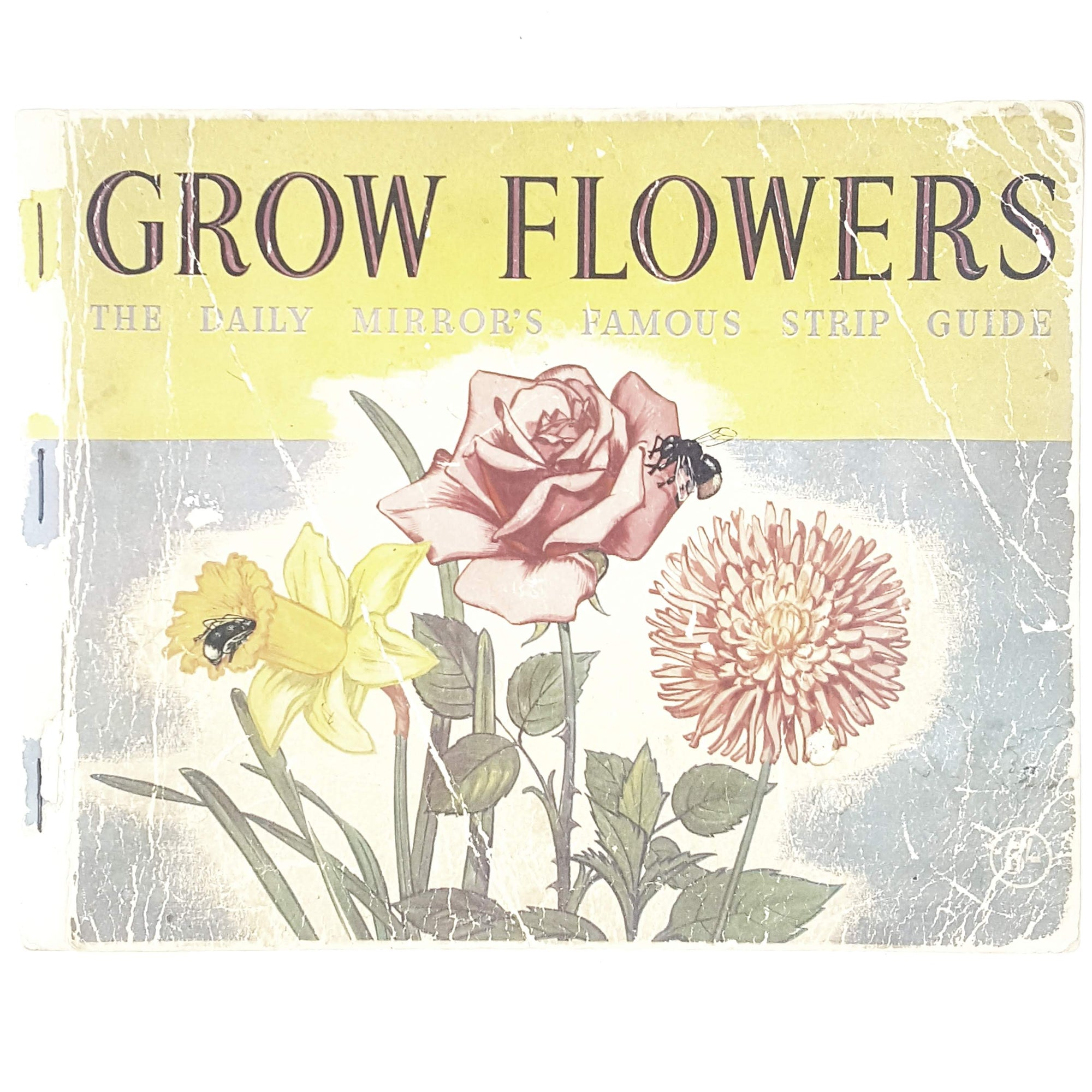 Grow Flowers: The Daily Mirror's Famous Strip Guide
