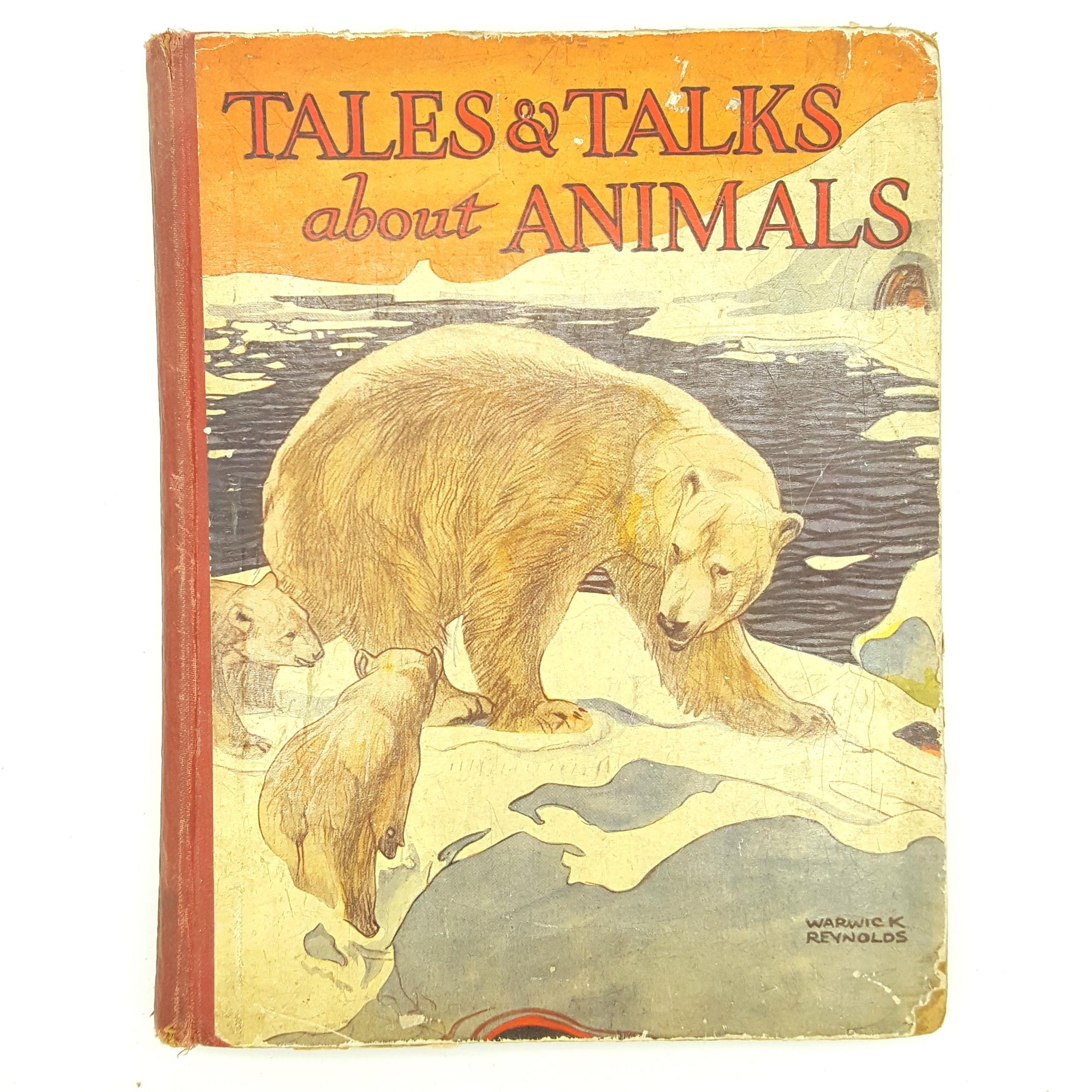 Tales & Talks about Animals 1928