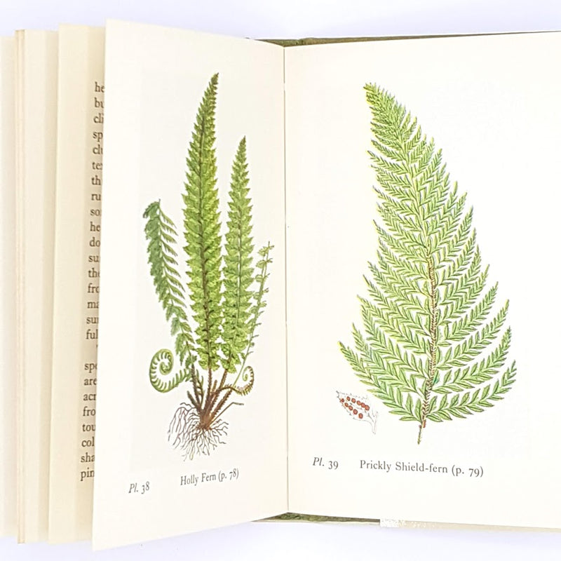 old-hardcover-country-house-library-1966-antique-decorative-ferns-observer-classic-patterned-francis-rose-vintage-books-thrift-