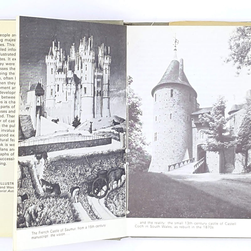 patterned-decorative-vintage-1979-castles-thrift-first-edition-observer-country-house-old-antique-classic-library-books-brian-k-davison-