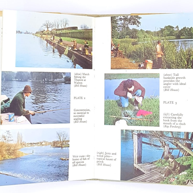 Observer's Book of Coarse Fishing 1977