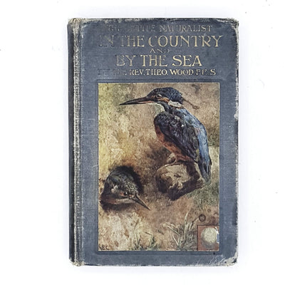 Illustrated The Little Naturalist in The Country and by the Sea by Rev. Theo Wood