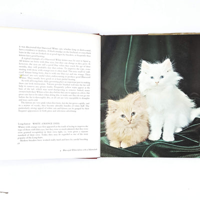 Grace Pond's The Batsford Book of Cats 1969