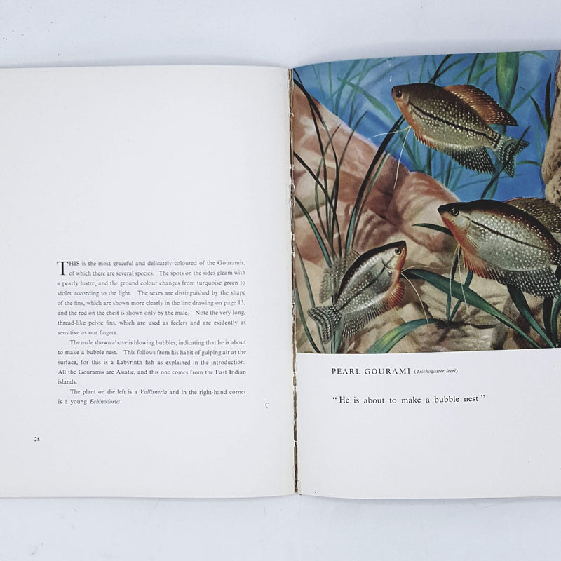 Cussons Book of Tropical Fishes by A. Fraser-Brunner