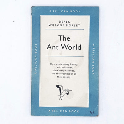 The Ant World by Derek Wragge Morley 1955