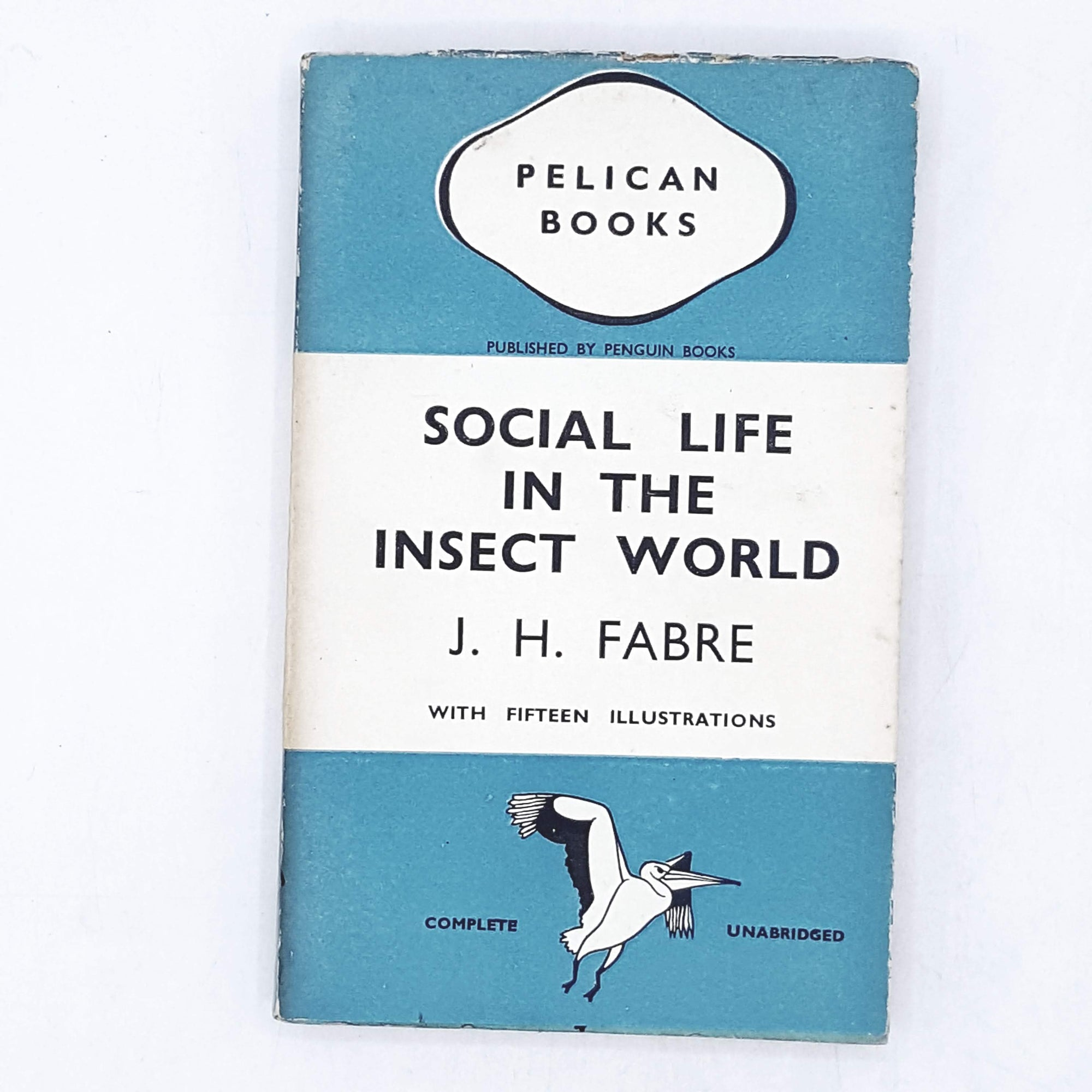 Social Life in the Insect World by J. H. Fabre 1938