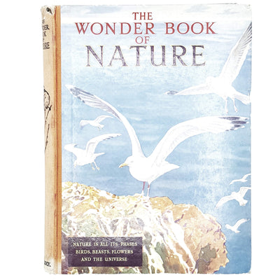 The Wonder Book of Nature