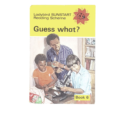 vintage-ladybird-guess-what-british-books-country-house-library