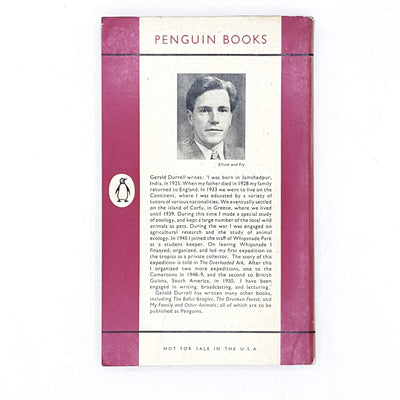 vintage-penguin-overloaded-ark-pink-country-house-library