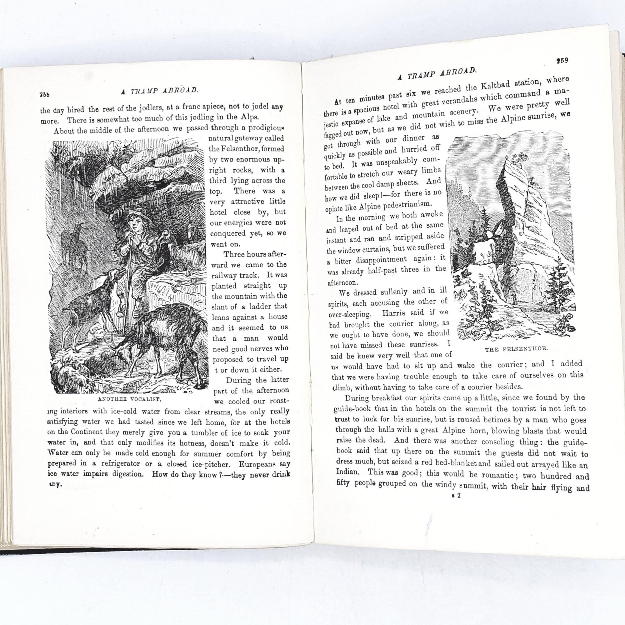 illustrated-a-tramp-abroad-by-mark-twain-blue-country-house-library