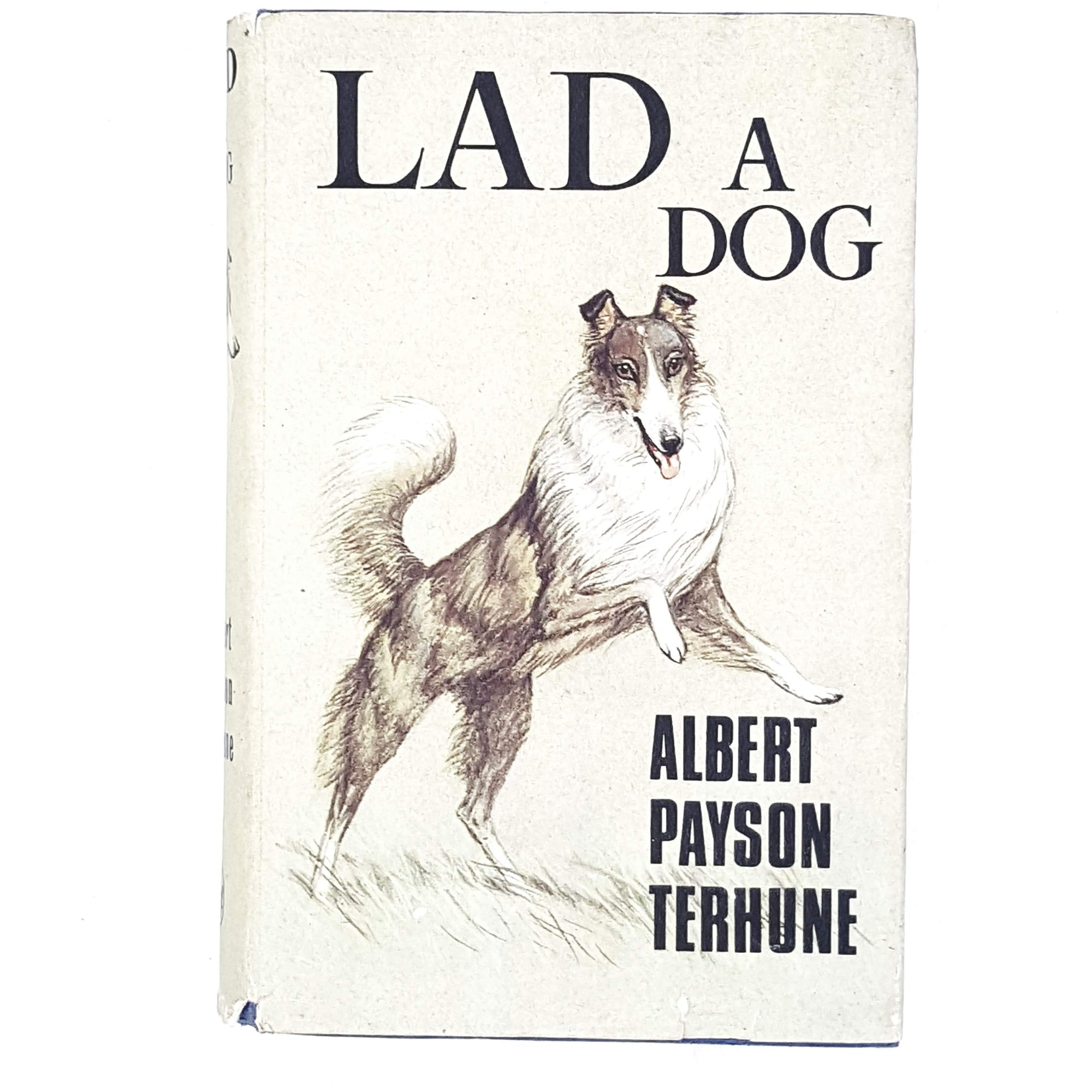 Illustrated Lad A Dog by Albert Payson Terhune 1966