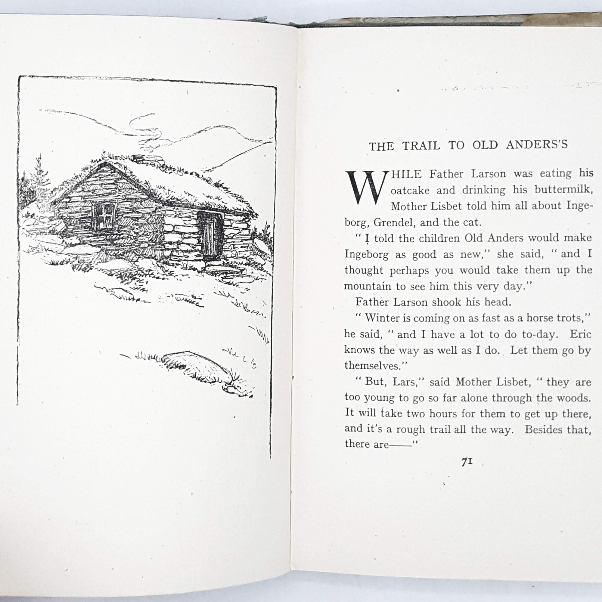 illustrated-the-norwegian-twins-lucy-perkins-country-house-library
