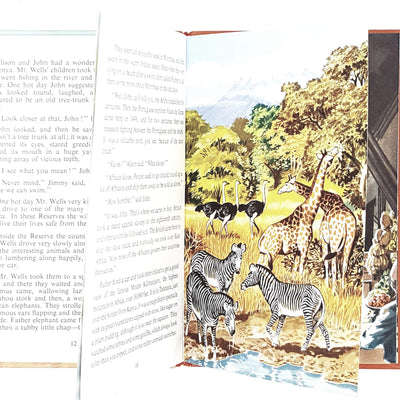 ladybird-flight-five-africa-kindergarten-books-country-house-library