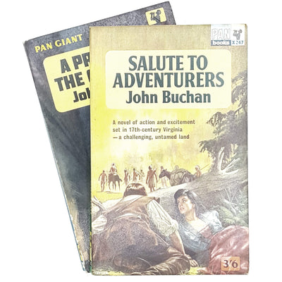 vintage-collection-john-buchan-country-house-library