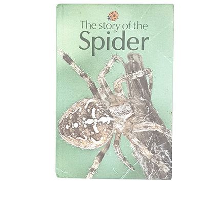 vintage-ladybird-the-story-of-the-spider-antique-kindergarten-books-country-house-library
