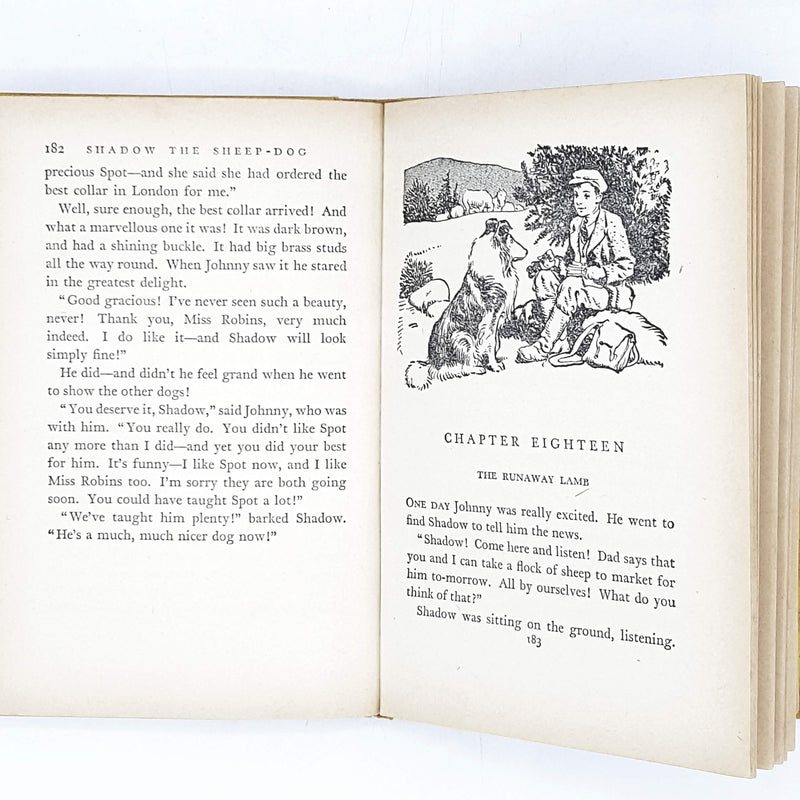 illustrated-enid-blytons-yellow-shadow-the-sheep-dog-1962-country-house-library