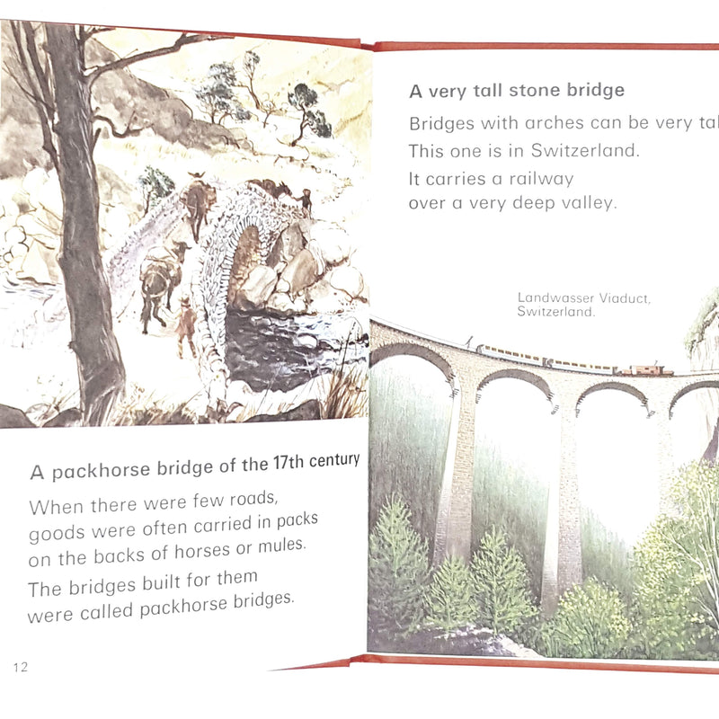 Ladybird Leaders: Bridges 1976