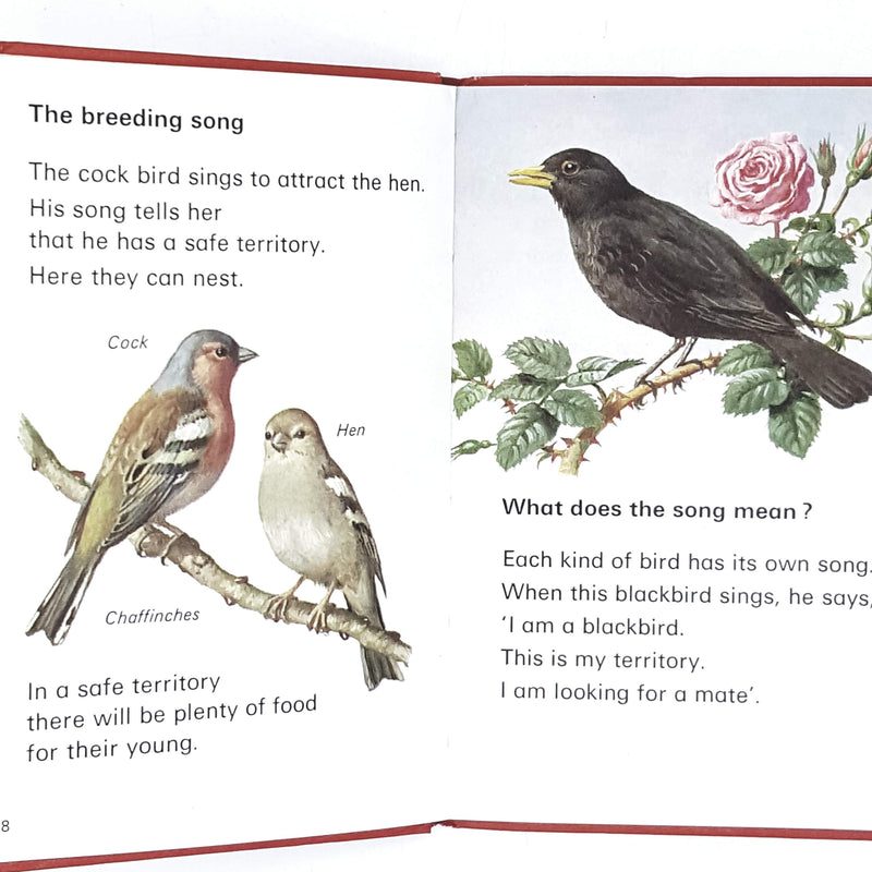 Ladybird Leaders: Song Bird 1974