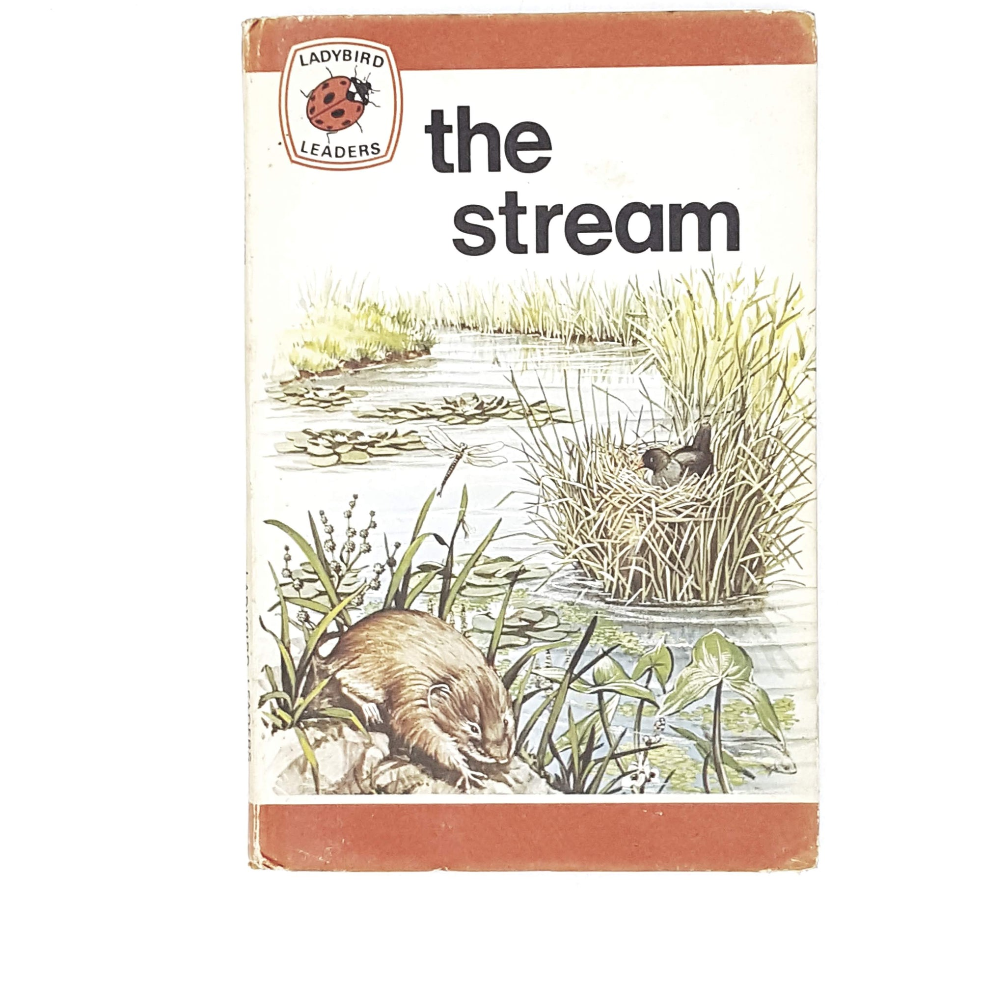 Ladybird Leaders: The Stream 1976