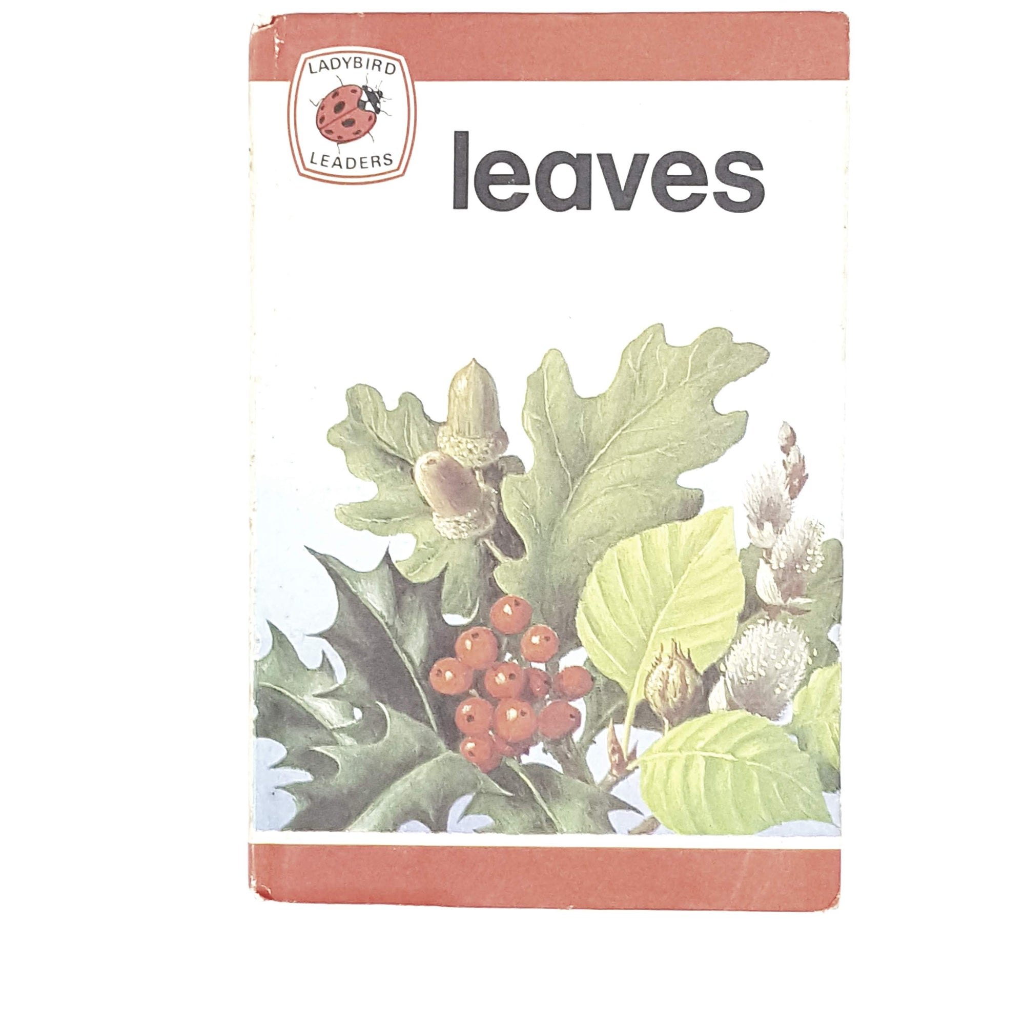ladybird-leaders-leaves-1975-country-house-library
