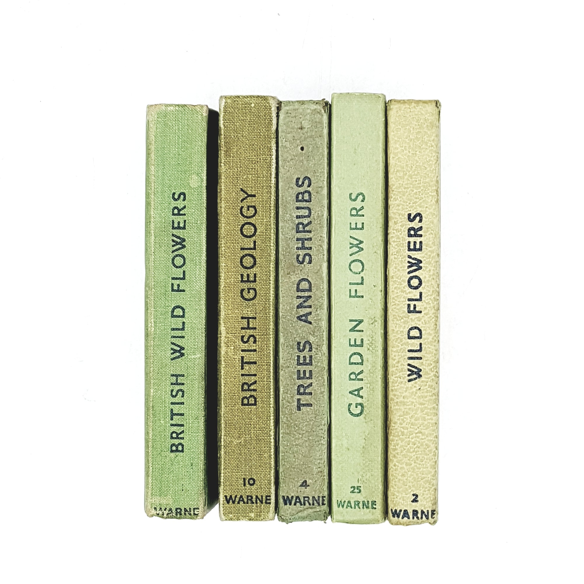 Observer Five Book Green Collection