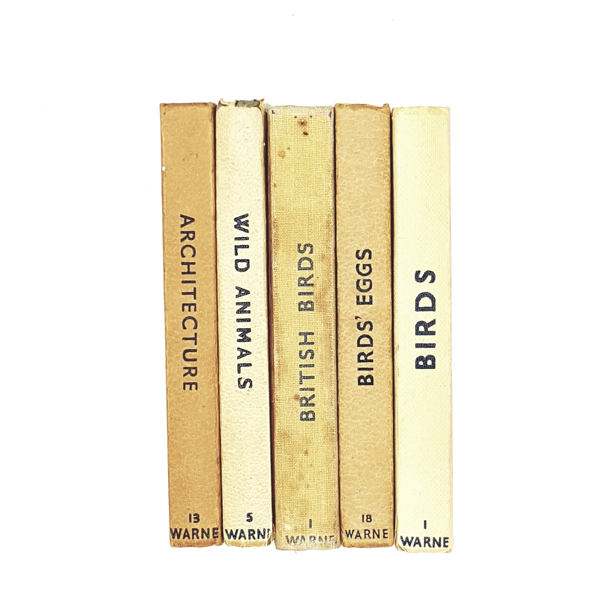 Observer Five Book Earth Tone Collection